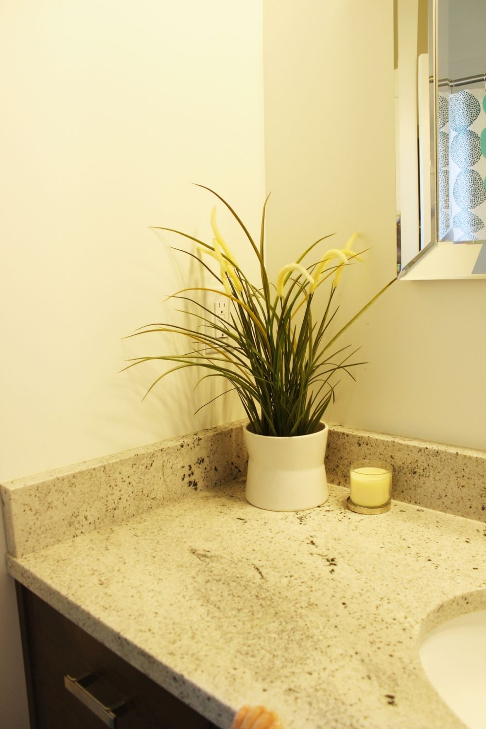Decorating the bathroom with small plants